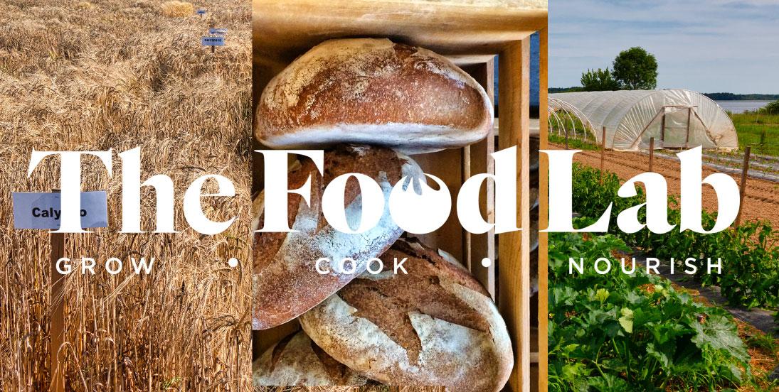 foodlab_1